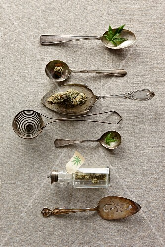 Vintage Silverware with Marijuana Leaves and Buds
