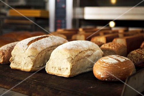 Various types of bread in a bakery