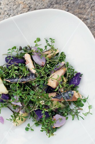 Herb salad with fish and a trio of potatoes