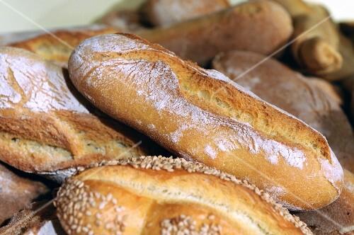 Ciabatta bread in a bakery