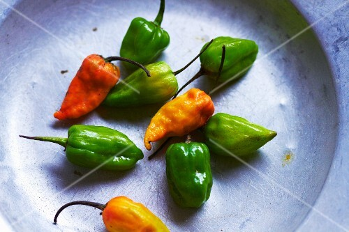 Fresh green and yellow chilli peppers