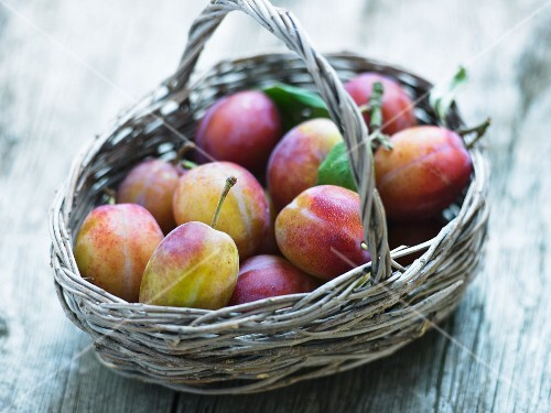 A basket of Victoria plums