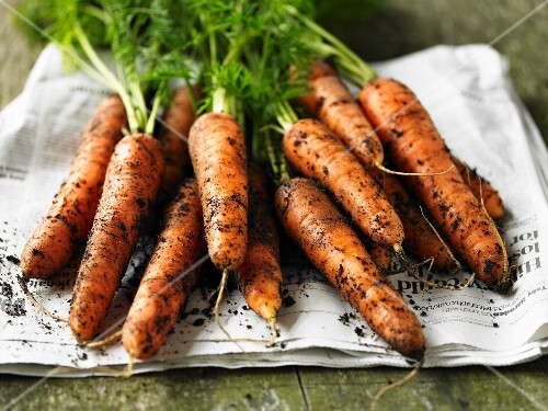 Fresh organic carrots on a newspaper