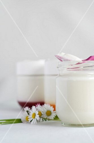 Jars of homemade yogurt with and without fruit