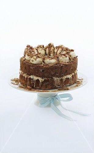 Chocolate and nut ice cream cake