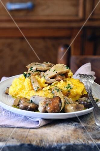 Polenta with fried porcini mushrooms