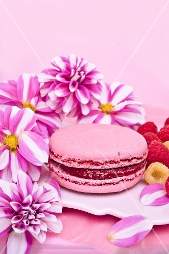 A pink macaroon filled with raspberry jam
