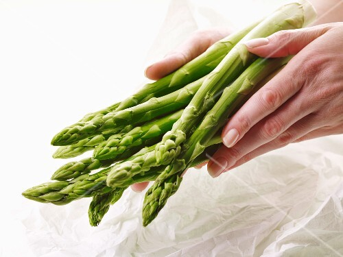 Hands holding fresh green asparagus