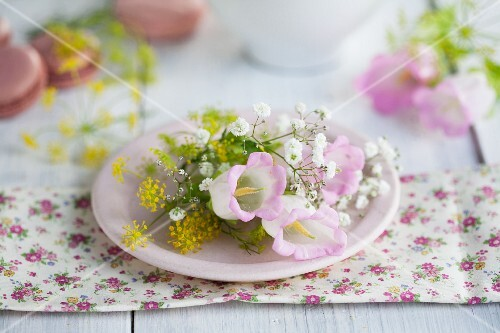 Bell flowers and baby's breath and fennel flowers on a light pink plate