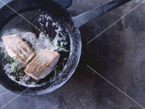 Zander fillets being fried