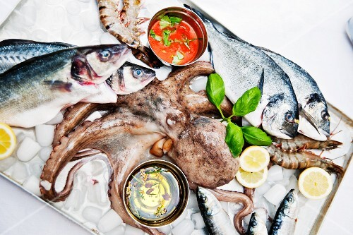 Fresh fish, octopus and giant prawns