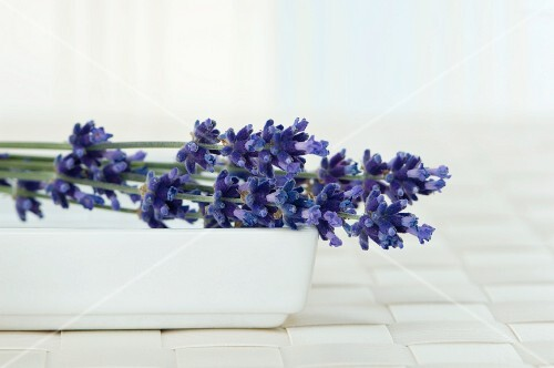 Lavender flowers in a bowl
