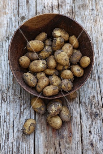 Potatoes in a wooden bowl (seen from above)