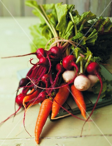 A bunch of radishes, carrots, turnips and beetroot