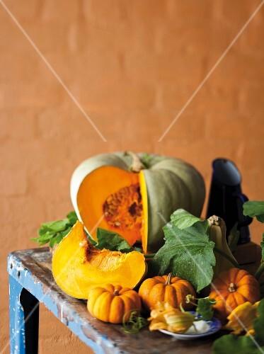 Still life featuring edible and ornamental squash