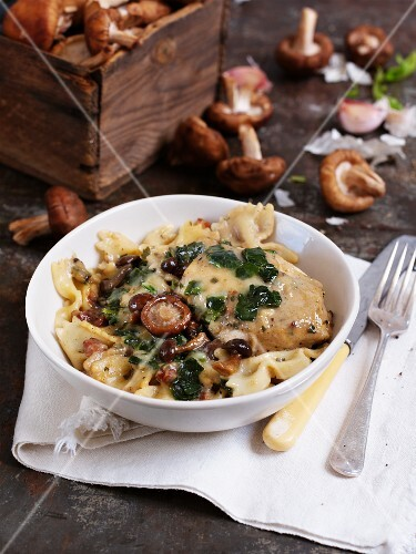 Farfalle with chicken and bacon and mushroom sauce
