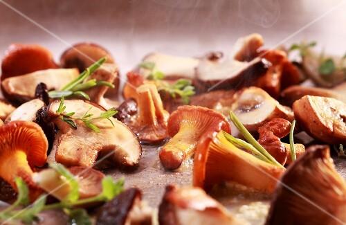 Mushrooms being fried in a pan