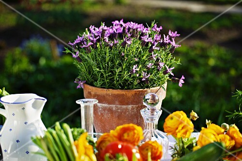 Fresh vegetables and flowers on a summery table outside