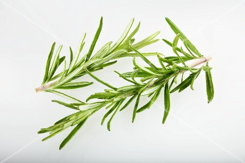 Two sprigs of rosemary