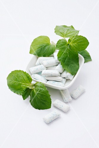 Mini chewing gum and fresh mint
