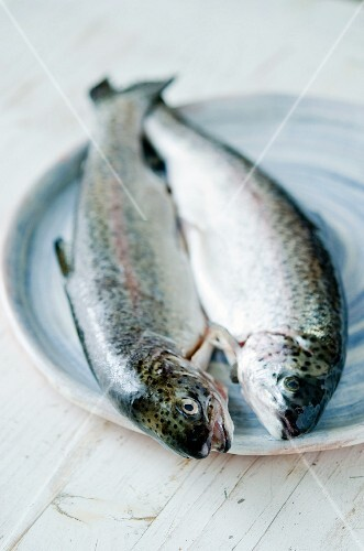 Two fresh trout on a ceramic plate