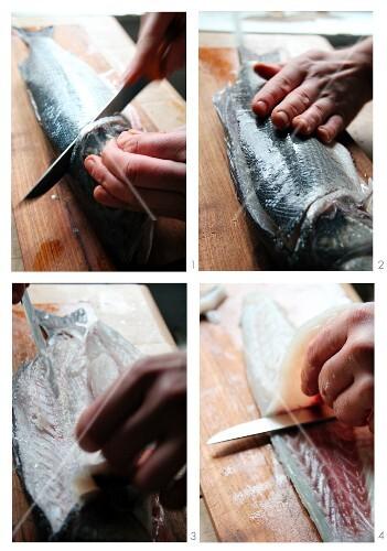 A bass being filleted