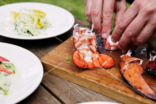 Orange and fennel salad with lobster