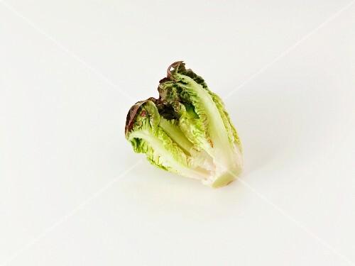 Lettuce heart