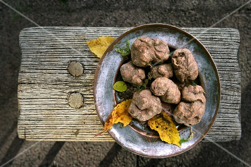 White truffles on a rustic plate