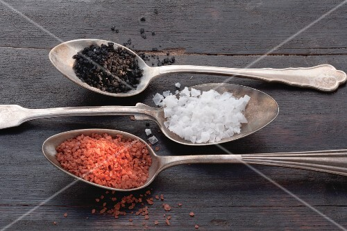 Three types of salt on silver spoons