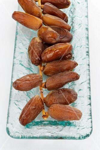 Dried dates on a twig