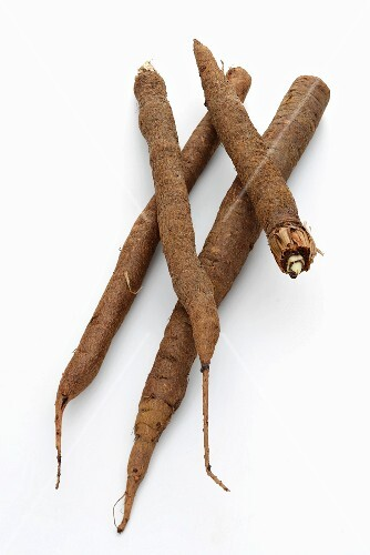 Four black salsify roots