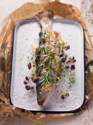 Char with various herbs on a bed of salt