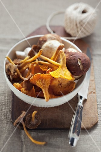 A bowl of fresh wild mushrooms