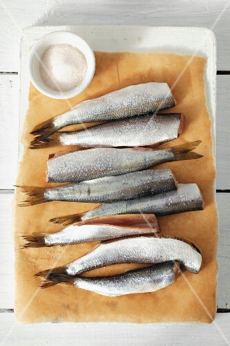 Fresh herrings on parchment paper and dish of salt