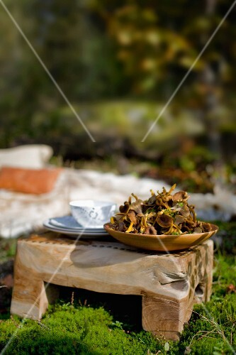 Dish of foraged woodland mushrooms and cutlery on rustic wooden stool on sunny moss in woodland clearing