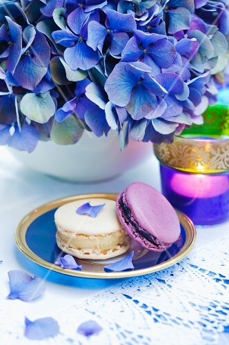 Macaroons, a blue hydrangea and a tealight