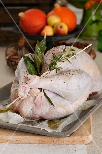 Turkey with herbs on a baking tray