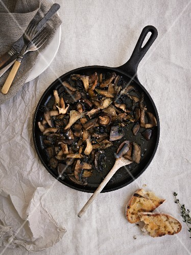 Stir-fried mushrooms with toasted bread