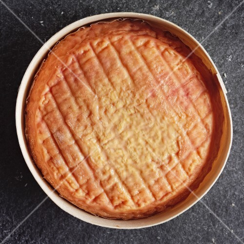 Époisses (Soft cow's milk cheese, France)