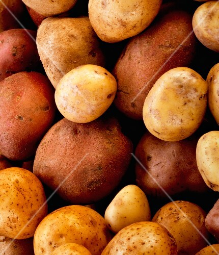 Various types of potatoes (close-up)