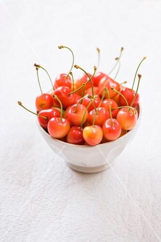 Blue Bowl of Cherries