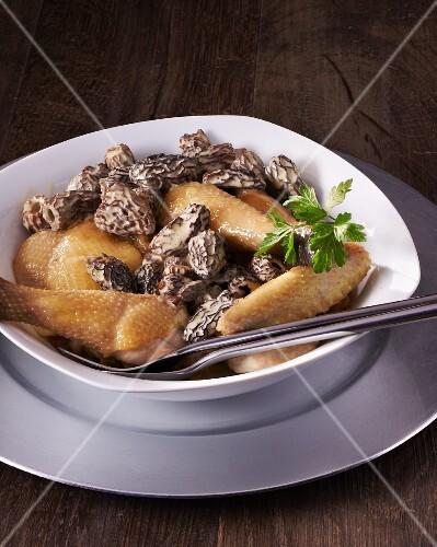 Bresse chicken with morels
