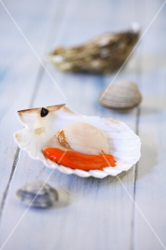 A raw scallop with coral