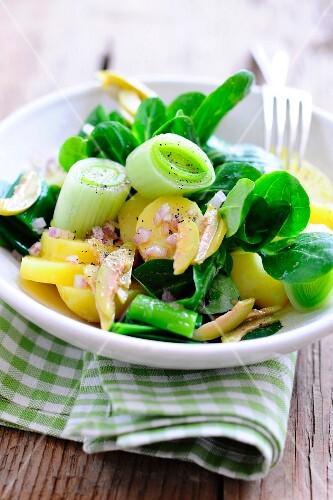 A salad of potatoes, lamb's lettuce, leek and red onions