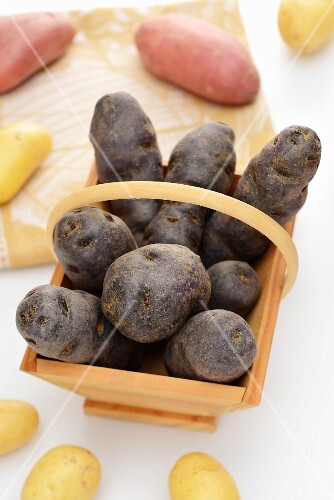 A basket of black potatoes (purple potatoes)