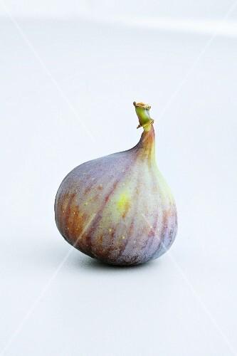 A fresh fig