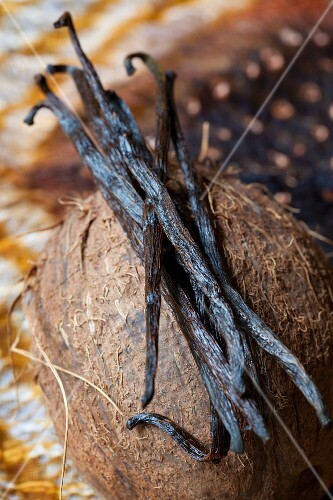 Vanilla pods on top of a coconut
