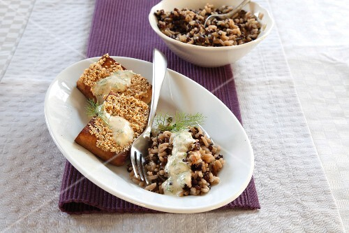Lentil rice with tofu-sesame bars and dill sauce