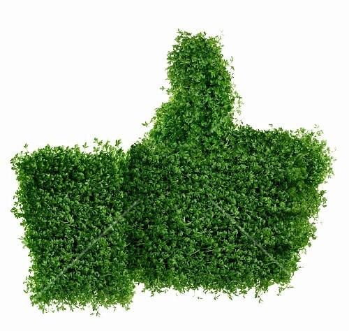 'Like' symbol made of watercress